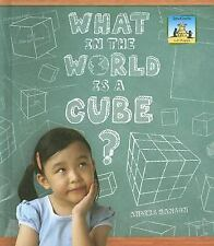 What in the World Is a Cube? (SandCastle: 3-D Shapes)
