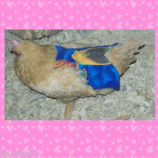 1 SUPER WIDE & LONG CHICKEN SADDLE APRON HEN FEATHER PROTECTION HATCHING EGGS