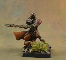 Dawn Warrior 3 from Rackham Confrontation painted miniature, D&D character