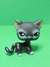 #994 Chat Cat Black Shorthair european blue eyes LPS Littlest Pet Shop Figure