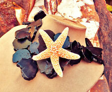 LG TURQUOISE Black STATEMENT NECKLACE SLAB Huge Big Stone JEWELRY Real Starfish
