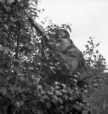 WW2 Photo WWII  World War Two Canadian Sniper Belgium 1944 Enfield   / 1508