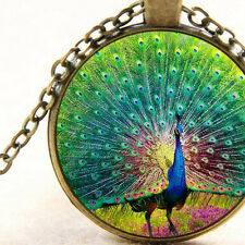 New Rainbow Peacock Feathers Necklace Pendant, Totem Animal, Bird Gift Jewellery