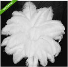 New wholesale 100pcs 12-14inches/30-35cm white ostrich feathers decor wedding