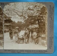 Japanese Stereoview Under Cherry Blossoms In Shiba Park Tokyo Japan