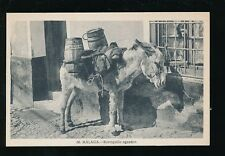 Spain MALAGA  Animals DONKEY water carrier Borriquillo aguador c1920/30s? PPC
