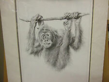 Paul Apps, Just Hanging Around - Signed Limited Edition Orangutan Print