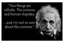 POSTER ALBERT EINSTEIN human stupidity quote 24X36 funny INSPIRATIONAL New - QW0