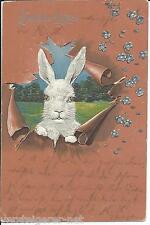 """Postkarte """"Fröhliche Ostern"""" 1905 nach Ludwigsburg"""