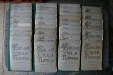 Familiar Wild Flowers [X33 Issues]- F Edward Hulme: 1st Ed c 1900 X33 PB Good