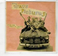 (HC634) The Wave Pictures, Great Big Flamingo Burning Moon - DJ CD