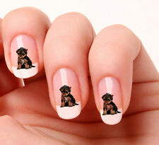 20 Nail Art Stickers Transfers Decals #592 - yorkshire Terrier Just peel & stick