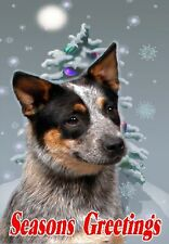 Australian Cattle Dog A6 Christmas Card Design XAC-1 by paws2print