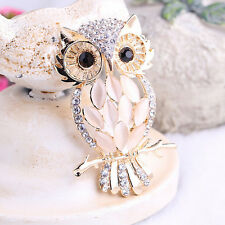 Big Owl Brooches Bouquet Vintage Wedding Hijab Scarf Pin Up Buckle Broches jx