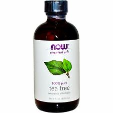 Tea Tree Oil (100% Pure), 4 oz - NOW Foods Essential Oils