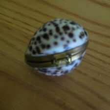 VNTG Natural Polished Cowry Shell Trinket Pill Coin Box~Brass Hinged~Philipines