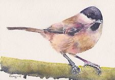 WILLOW TIT - ORIGINAL WATERCOLOUR PAINTING - PHILIP KNAGGS