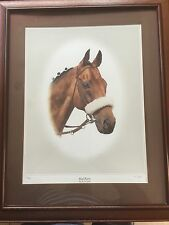 RED RUM SIGNED PRINT FRAMED AJ GAD 87/850 LOVELY CONDITION