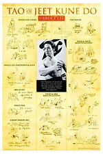 Bruce Lee Teachings Poster! Tao of Jeet Kune Do Fighting Stances Martial Arts!