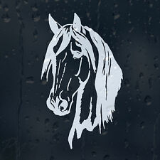 Horse Head Car Laptop Phone Wall Furniture Decal Vinyl Sticker Colour Choice