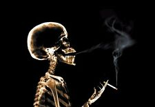 Art Poster Smoking Skeleton X Ray  Xray  Print
