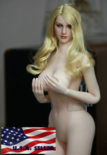 Phicen 1/6 Super-Flexible Seamless Body American Sexy Beauty Doll Full Set KT007