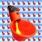 (100) AUTOMATIC WATERER DRINKER CUP CHICKEN COOP POULTRY CHOOK BIRD TURKEY DRINK