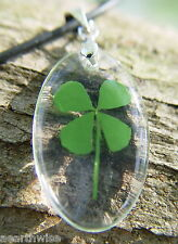 REAL LUCKY FOUR LEAF CLOVER RESIN PENDANT Wicca Witch Pagan Goth GOOD LUCK