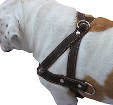 "Genuine Leather Dog Pulling Harness 1.5"" wide  25.5""-31"" chest  Amstaff, Boxer"