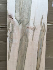 AD Ambrosia Maple Beetle Striped Wormy Maple  Table Top Bench Resaw Craft Blank