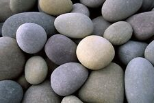 Sea Rocks-Aquarium Decorations-Garden Decorations-850gr-Pebbles Decor