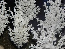 SET 5 Snow TREES Gorgeous SNOW FLOCKED, CHRISTMAS Village Display Dept 56 Lemax