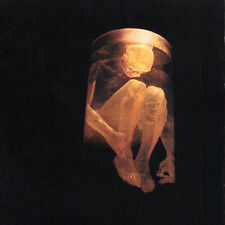 ALICE IN CHAINS Nothing Safe: Best Of The Box CD
