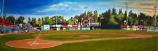 Limited Edition Print /100 of Nat Bailey Stadium Vancouver by Jennifer Ettinger