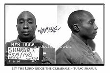 * TUPAC SHAKUR * large autograph photo of 2PAC. perfect gift, looks great framed