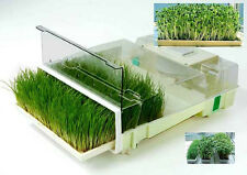 EasyGreen MikroFarm Sprouter Auto Misting~Timer~ Grow Wheatgrass Sprouts & More