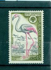 FENICOTTERO ROSA - PINK FLAMINGO FRANCE 1970