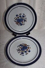 Lot of 2 Blue Monterrey Stoneware Floral Dinner Plates MSI Japan