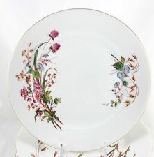 ANTIQUE FULL SET 12 PLATES LIMOGES PORCELAIN CHINA HAND DECO MEADOW FLOWERS GOLD