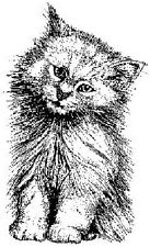 PERSONAL IMPRESSIONS Wood Mounted Rubber Stamp SITTING PRETTY CAT KITTEN  FP41