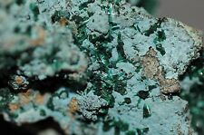 BROCHANTITE on Rare Plancheite