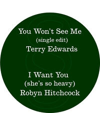 You Won't See Me + I Want You (she's so heavy) - Terry Edwards, Robyn Hitchcock