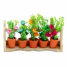 Dolls House Miniature 5 Plants On A Wood Plant Stand