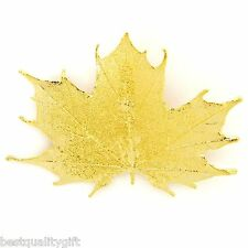 NEW 100% REAL NATURAL SUGAR MAPLE LEAF DIPPED IN GOLD BROOCH PIN AND PENDANT