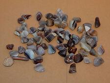 Baby Botswana Agate tumbled stones 1/4 pound (10715)