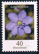 2485 ** , BRD 2005, Blumen. Leberblümchen