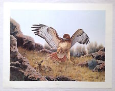"""Dave Chapple California Popular Wildlife Artist Signed Limited Ed """"The Arena"""""""