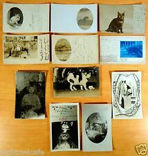 Pet Cats 11 Photo Postcards 1905-50 Nice Collection MEOW! cats CaTs cAtS CATS