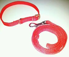 PUPPY Dog Collar Belt + Leash Set In Attractive colours Pattern.