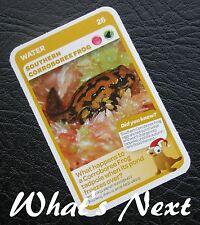 Woolworths AUSSIE ANIMALS  Series 2 Baby Wildlife CARD 26/36 Corroboree Frog